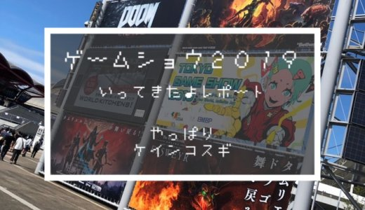 【TGS2019】東京ゲームショウ2019に行ってきたよレポート【ケインコスギ】