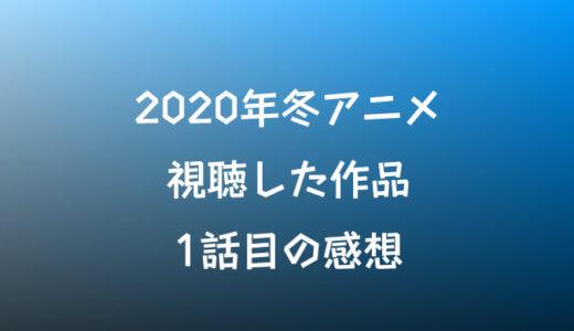 【2020年冬アニメ】各作品の第1話の感想を見たものだけ雑に書いていく【評価】