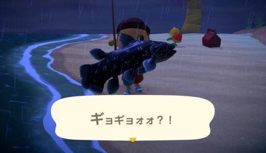 【あつ森】魚影の大と特大の見分けがつかない!違いを鍛える見極めクイズ!